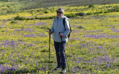 Monatsrückblick Januar 2021 – Wandern auf Lanzarote