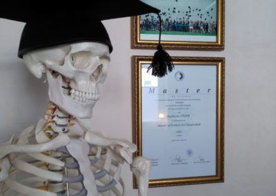 Skelett mit Doktorhut