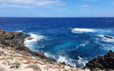 Mein Alltag auf Lanzarote – 12 von 12